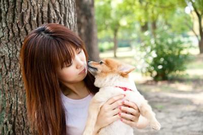 犬と幸せな暮らし