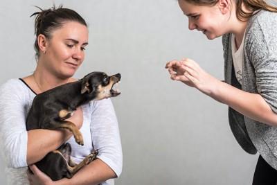 飼い主に抱っこされながら近くの女性に牙をむく犬