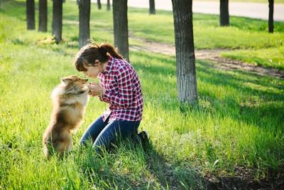 フィラリアに感染する危険性のある犬と人