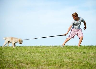 踏ん張る犬と引っ張る男の子