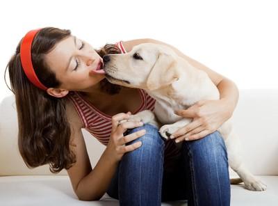キスする犬