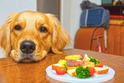 皿に乗った野菜と犬