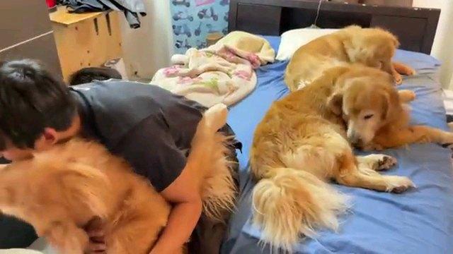 犬を抱き締める人