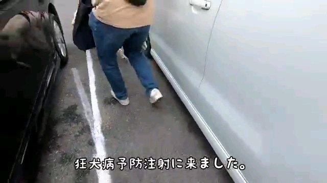 狂犬病予防~字幕