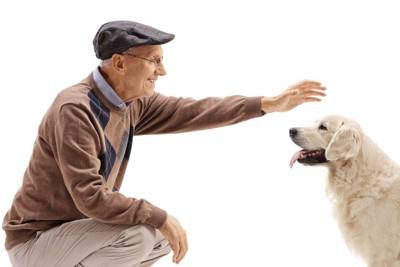 犬を撫でようとしている年配の男性