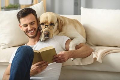 読書をする男性と眼鏡をかけたゴールデンレトリーバー