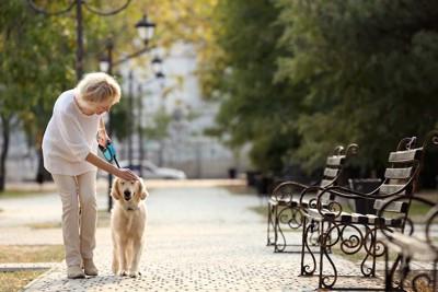 ベンチのある公園を散歩する女性と犬