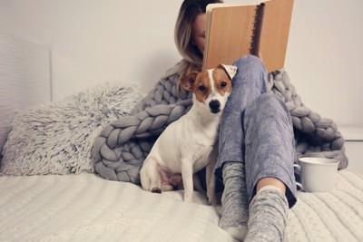 飼い主にくっついて座る犬