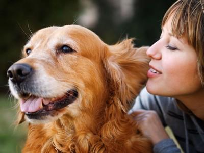 犬の耳元で話をする飼い主