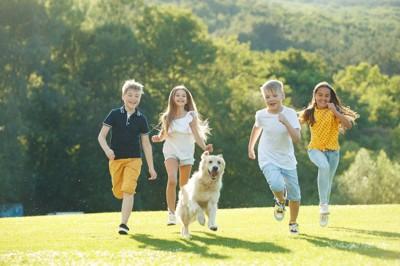 子供達とかけっこをして遊ぶ犬