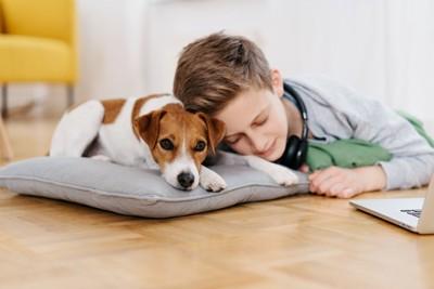 男の子に寄り添われる犬