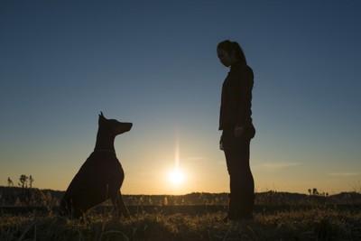 犬と向き合う女性