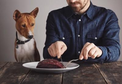 ナイフとフォークで肉を切る男性を見つめる犬