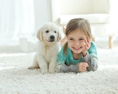 笑顔の女の子の横に座る子犬
