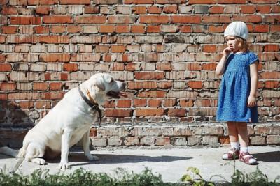 座って女の子を見つめる大型犬