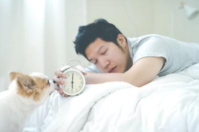 起こそうとする犬と眠そうに目覚まし時計を持つ男性