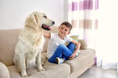 ソファーに座る子どもと犬