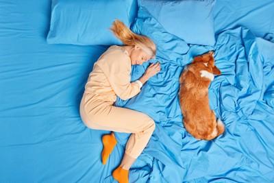 一緒に寝る飼い主と犬