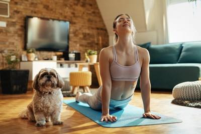 ストレッチする女性と犬