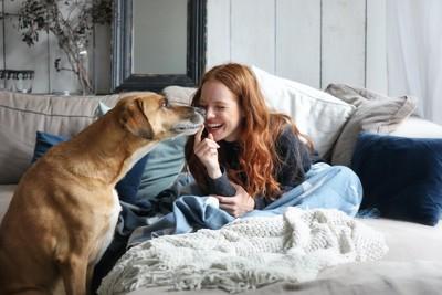 笑顔の女性の顔に鼻を近づける犬
