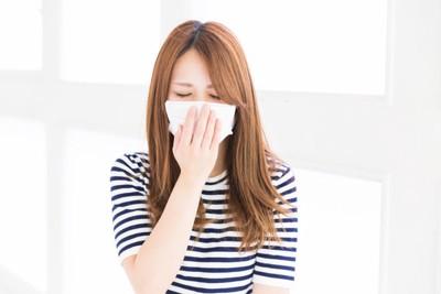 犬アレルギーを持っている女性