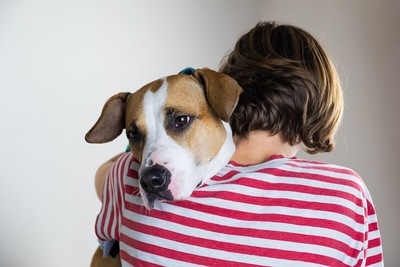 犬を抱きしめる人の後ろ姿