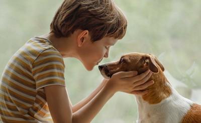 両手で犬の顔を包んで鼻先にキスをしようとする男の子