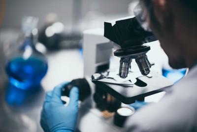 顕微鏡を覗く科学者