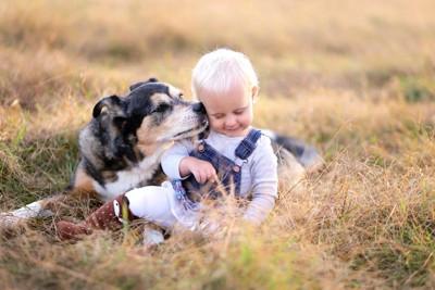 草原で遊ぶ犬と赤ちゃん
