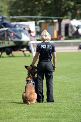 警察官の隣に座る警察犬の後ろ姿