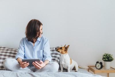 ベッドで見つめ合う犬と女性