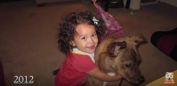 犬を抱える幼児