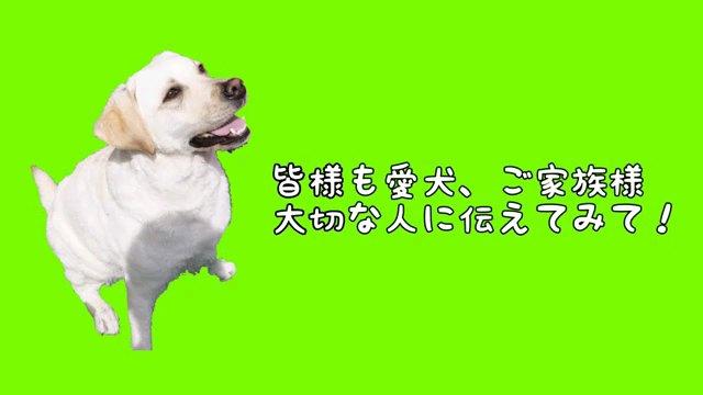 皆様も~字幕