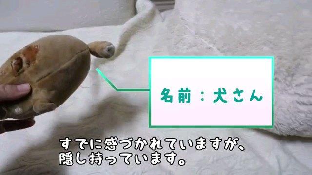 すでに~字幕