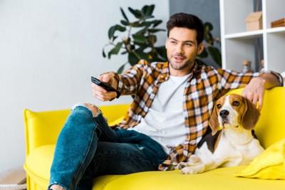 テレビを観る飼い主と犬