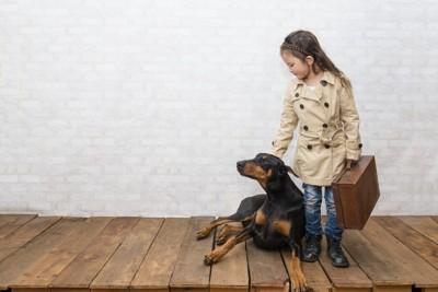 スーツケースを持った女の子と犬