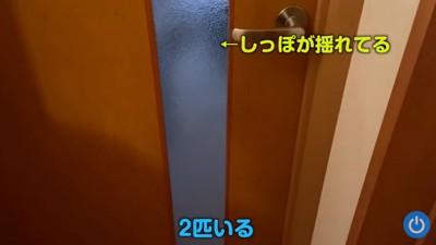 ドアの前の影