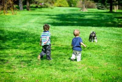 屋外で犬に近づく男の子たち
