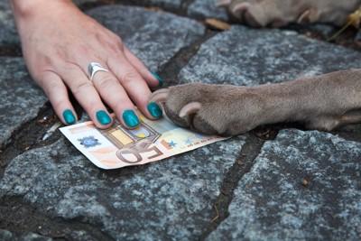 お金をおさえる犬の手と人の手