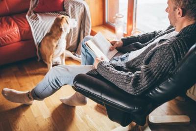 飼い主さんと窓際で日向ぼっこをする犬