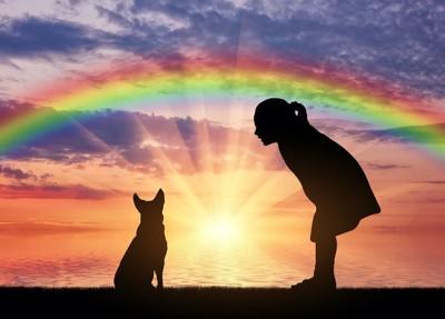 虹をバックにした犬と子供のシルエット