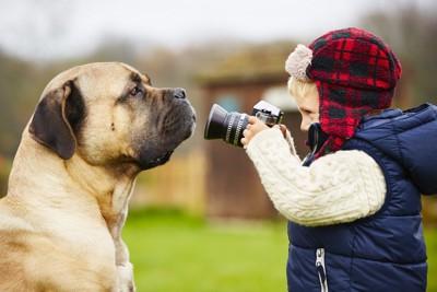 犬の写真を撮る男の子