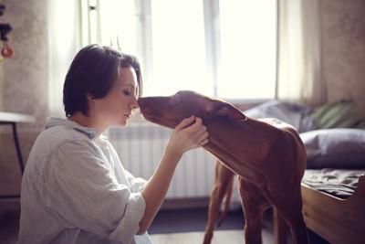 女性の顔に鼻を近づける犬