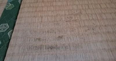 ボロボロの畳