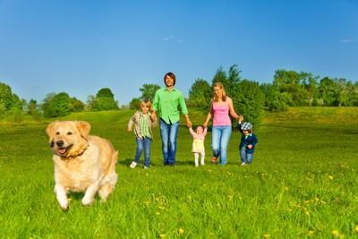 ゴールデンレトリーバーと家族