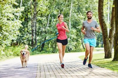 ジョギングする犬とカップル