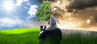対照的な自然環境と犬と女性の後ろ姿
