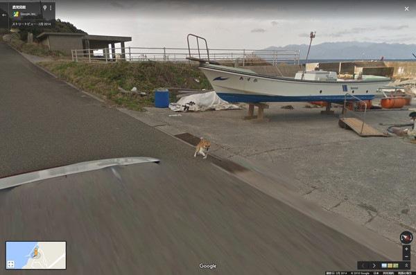 ストリートビューに写り込んだ柴犬