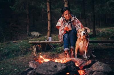 キャンプファイヤーをする女性と犬
