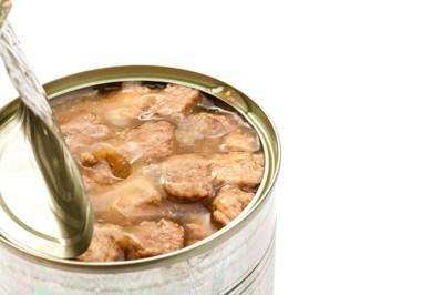 缶詰のフード